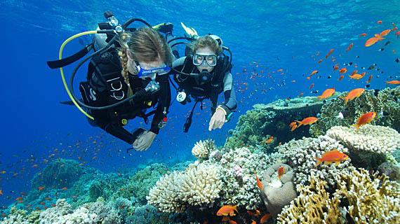 orologi subacquei sub diver